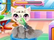 Stray Kitty Care Walkthrough
