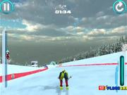 Alpine Ski Master Walkthrough