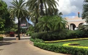 iPhone 6 Plus Video Test 2 - Busch Gardens Tampa