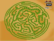 Maze Game - Game Play 1: Find The Chicken