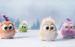 The Angry Birds - Hatchlings Holiday Trailer