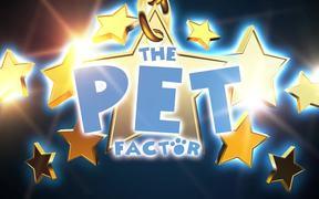 The Pet Factor Cat