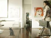 Vorwerk Commercial: Dust Cat
