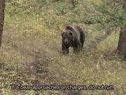 Grand Teton National Park: Backcountry Travel