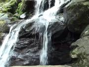 Shenandoah National Park: Protecting Backcountry