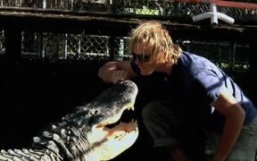 A Gator Wrestling Show