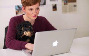 Labamba Commercial: Office Dog