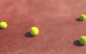 France 3 Video: Hippopotame - Tennis