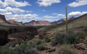 Grand Canyon NP: Springtime in Grand Canyon