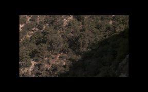 Grand Canyon NP: Condors at the South Rim