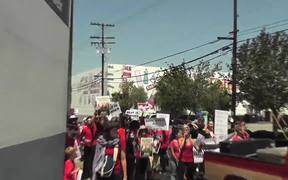 March To Close All Slaughterhouses-Protest in CA