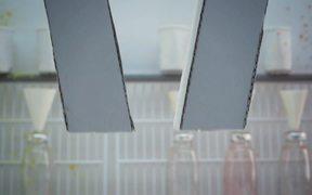 DisneyXD Video: Chain Reactions