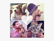 Best Friends Animal Society Video: Celebrity Pets