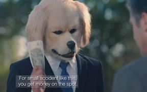 GPI Commercial: Cow