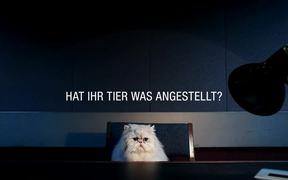 VHV Pet Insurance Campaign: Cat