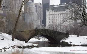 Panorama from Central Park in Slow Motion