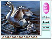 Faboulous Swans Hidden Numbers