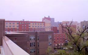 LEED Platinum Apartment Building - New York