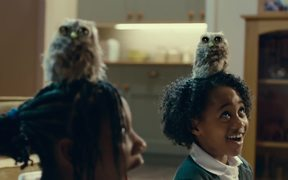 McVitie's Commercial: Owl