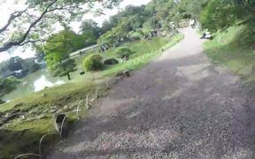 Historical Street in Hikone