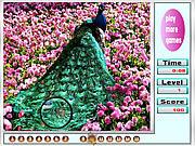 Fresh garden animal hidden numbers