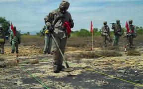 Vietnam Starts UXO Clearance in Danang