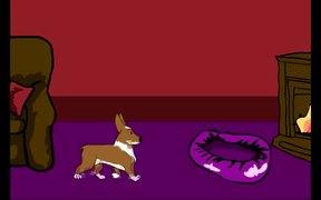 My Dog Bailey - Clodagh Guerin