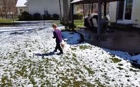 The Snowballs