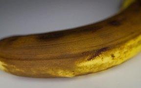 Banana Ripening Time Lapse